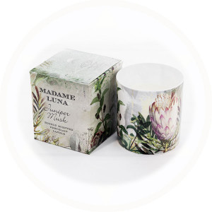 Botanical Design 2 Juniper Musk fragrance boxed porcelain candle - AllisOne